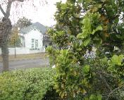 Stellenbosch accommodation selfcatering