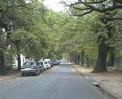 Ryneveld Street in central Stellenbosch near the University of Stellenbosch